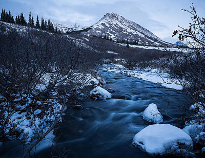 Photograph - Mountain Stream In Twilight by Tim Newton