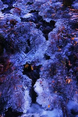 Photograph - Stream Dreams by Sean Sarsfield