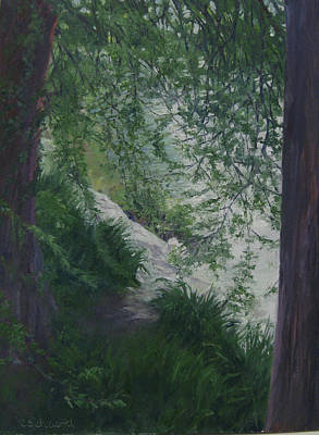 Stream From The Shady Trees Art Print by Connie Schaertl