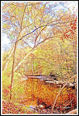 Photograph - Stream In Autumn by A Gurmankin