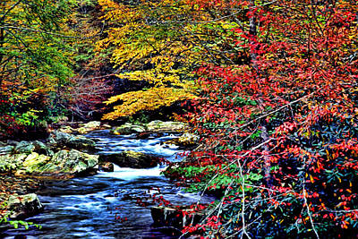 Stream In Autumn Art Print by Kevin  Sherf