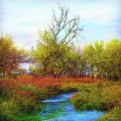 Digital Art - Stream In Autumn Light by Joel Bruce Wallach