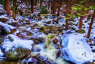 Stream In Snow Covered Woods Art Print by Garry Gay