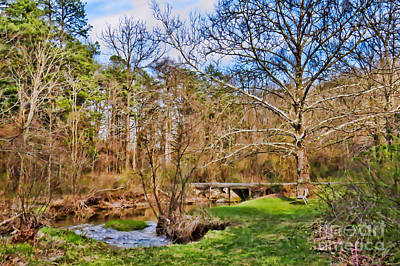 Photograph - Stream In The Forest by Kerri Farley