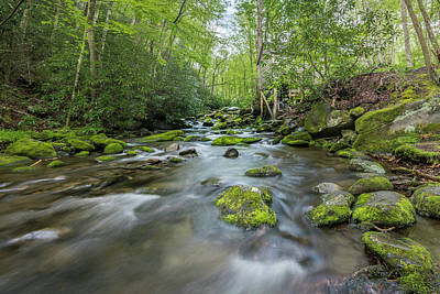 Mountain Stream Photograph - Stream In The Smokies by Jon Glaser
