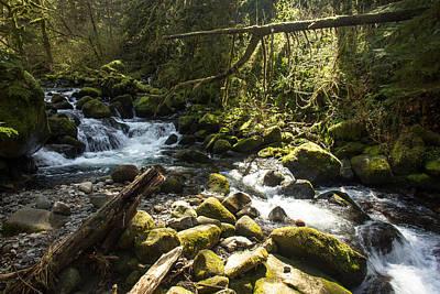 Photograph - Stream by Jason Clarke