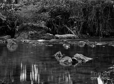 Photograph - Stream by Jimmy Ostgard