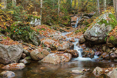 Photograph - Stream by Pierre Cornay