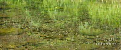 Stream Reflections Art Print