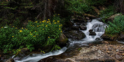 Photograph - Stream - Rocky Mountain Natioanal Park by Aaron Spong