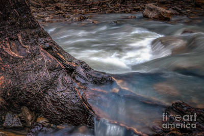 Photograph - Stream Story by Larry McMahon