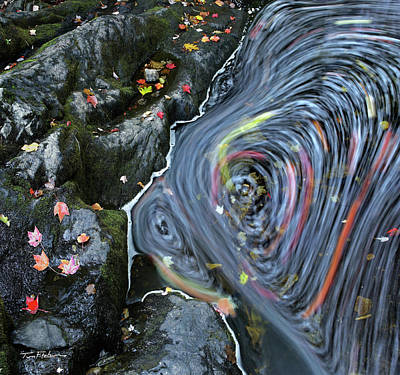 Photograph - Stream Swirl by Tim Fitzharris