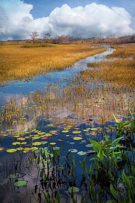 Photograph - Stream Through The Everglades by Debra and Dave Vanderlaan