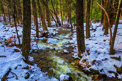 Stream Through Winter Woods Art Print