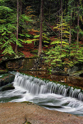 Photograph - Stream With Water Cascade In Autumn Forest by Artur Bogacki