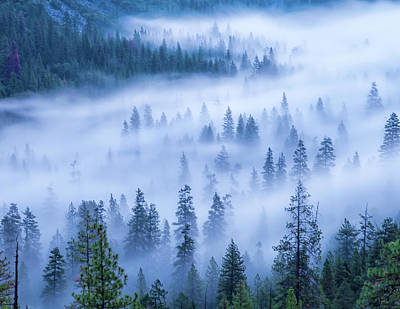 Photograph - Streaming Fog by Jonathan Nguyen
