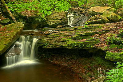 Photograph - Streaming Into The Pool At Ricketts Glen by Adam Jewell