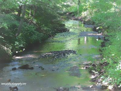 Photograph - Streaming Summer Afternoon by Tami Quigley