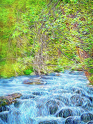 Digital Art - Streaming Through The Woods by Joel Bruce Wallach