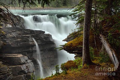 Photograph - Streams Of Athabasca Falls by Adam Jewell