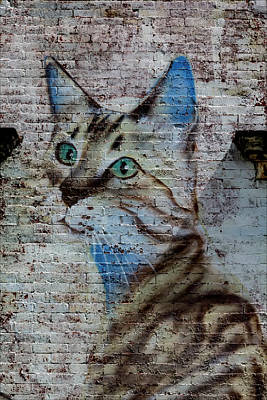 Of Cats Photograph - Street Art Nyc Painting Of Cat by Robert Ullmann