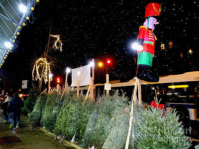 Photograph - Street Corner Christmas Trees #2 by Ed Weidman