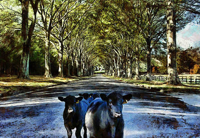 Digital Art - Street Cows by JGracey Stinson