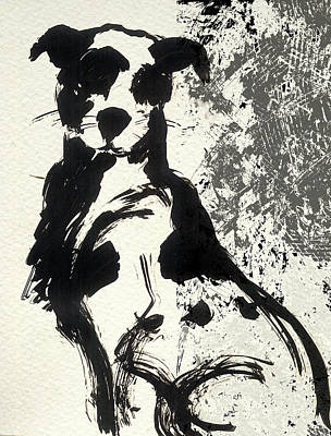 Drawing - Street Dog Sketch by Nato  Gomes