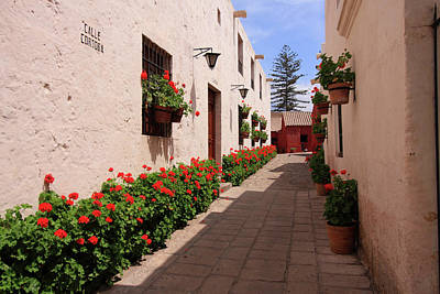 Photograph - Street In Santa Catalina Monastery by Aidan Moran