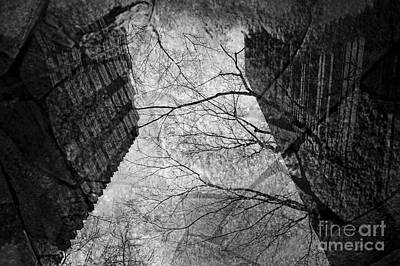 Photograph - Street Scene Buildings And Tree Reflected In Puddel by Jim Corwin