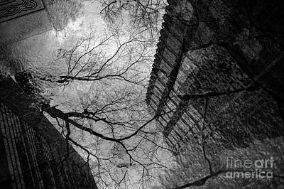 Photograph - Street Scene Buildings And Tree Reflected In Puddle by Jim Corwin