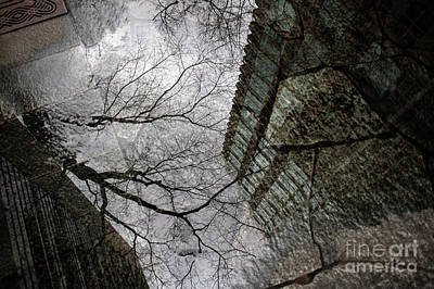 Photograph - Street Scene Buildings And Tree Reflections by Jim Corwin
