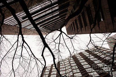 Photograph - Street Scene With Bare Tree Limbs by Jim Corwin