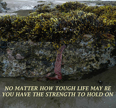 Anti-bullying Photograph - Strength To  Hold On by Gallery Of Hope