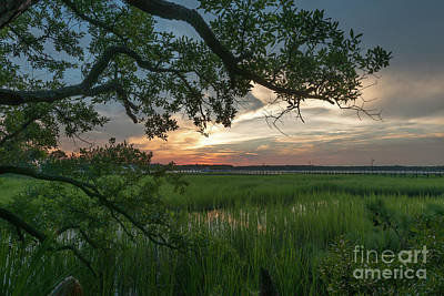 Photograph - Stretching To Twilight by Dale Powell