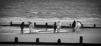 White Stallion Photograph - Striding Into The Sea by Martin Newman