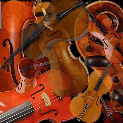 Photograph - String Instruments 1 by Andrew Fare