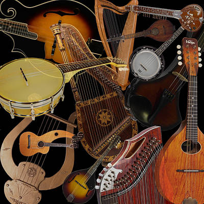 Photograph - String Instruments 2 by Andrew Fare