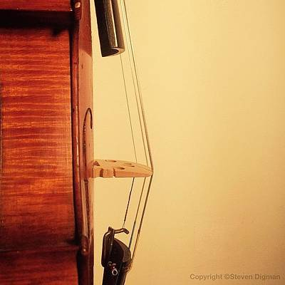 Violin Wall Art - Photograph - String Theory  by Steven Digman
