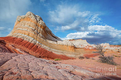 Photograph - Striped Rock by Bill Singleton