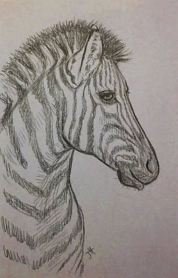 Drawing - Striped Stud by Jennifer Hotai