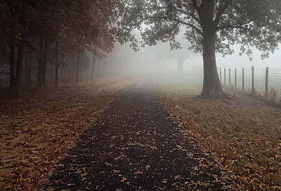 Photograph - Stroll Into Fog by Greg Jackson
