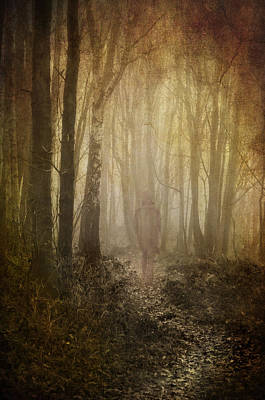 Manipulated Photograph - Stroll Through My Mind by Meirion Matthias