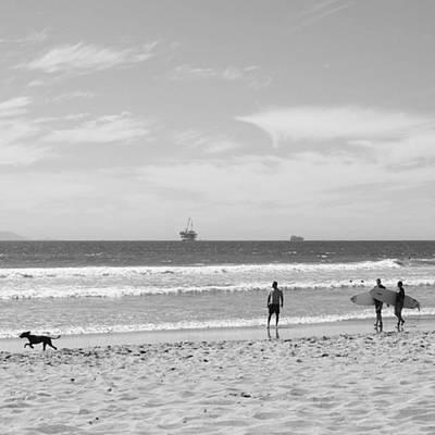 Wall Art - Photograph - Strollin On Dog Beach by Leah McPhail