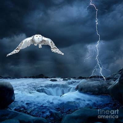Photograph - Stronger Than The Storm by Heather King