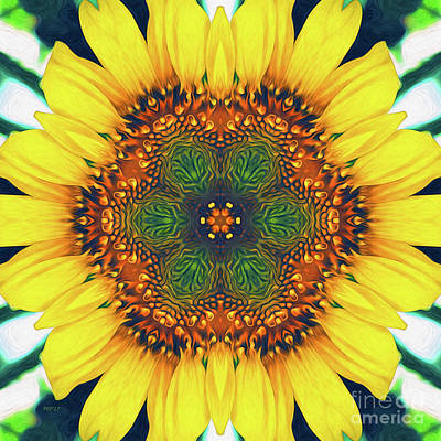 Digital Art - Structure Of A Sunflower by Phil Perkins