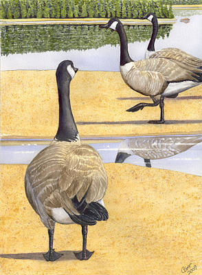 Struttin Thier Stuff Art Print by Catherine G McElroy