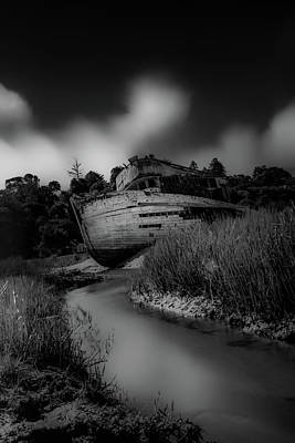 Point Reyes National Seashore Photograph - Stuck by Marnie Patchett