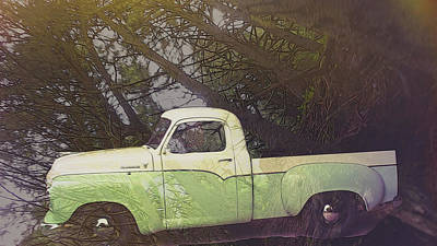 Digital Art - Studebaker In The Trees by Cathy Anderson