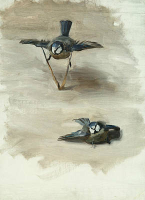 Painting - Studies Of A Dead Bird by John Singer Sargent